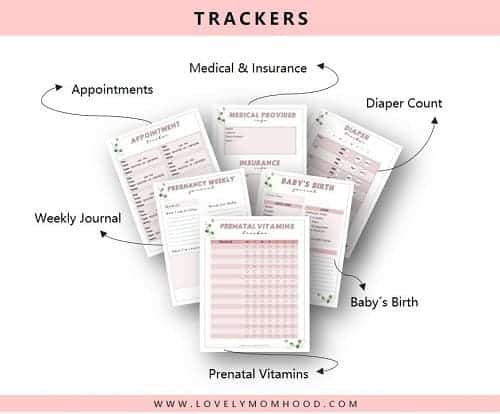 printable pregnancy tracker