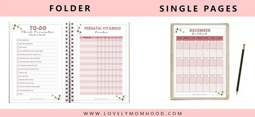 printable pregnancy checklists